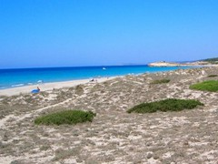 Son Bou Beach from the dunes<br/><br/>I visit Son Bou and Santa Tomas twice a year and having seached around all the Baleric islands have found these beaches to be the best